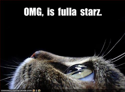 Omg, is fulla starz!
